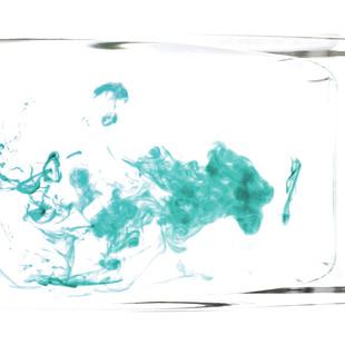 blue lioness smoking kill -1.jpg