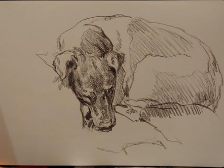 Buddy Sketch 7-27-20
