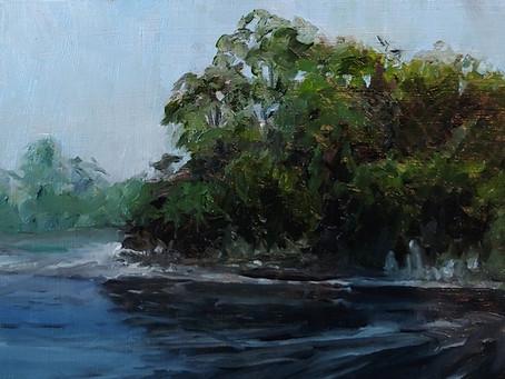 Fox River Bay Study