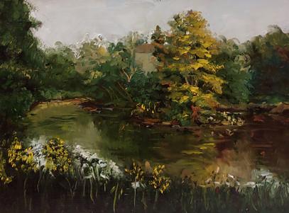Hidden Lakes Study