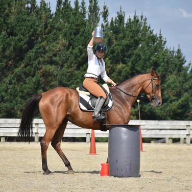 Ex-racehorse transfored to Working equitation mount ;)