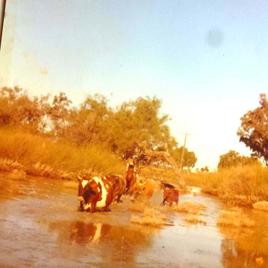 As a Toddler in the aussie outback