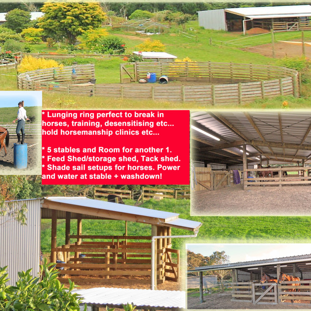 stables lunging ring etc....jpg