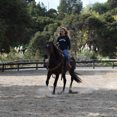 Colorado and his new owner Emily looking great!