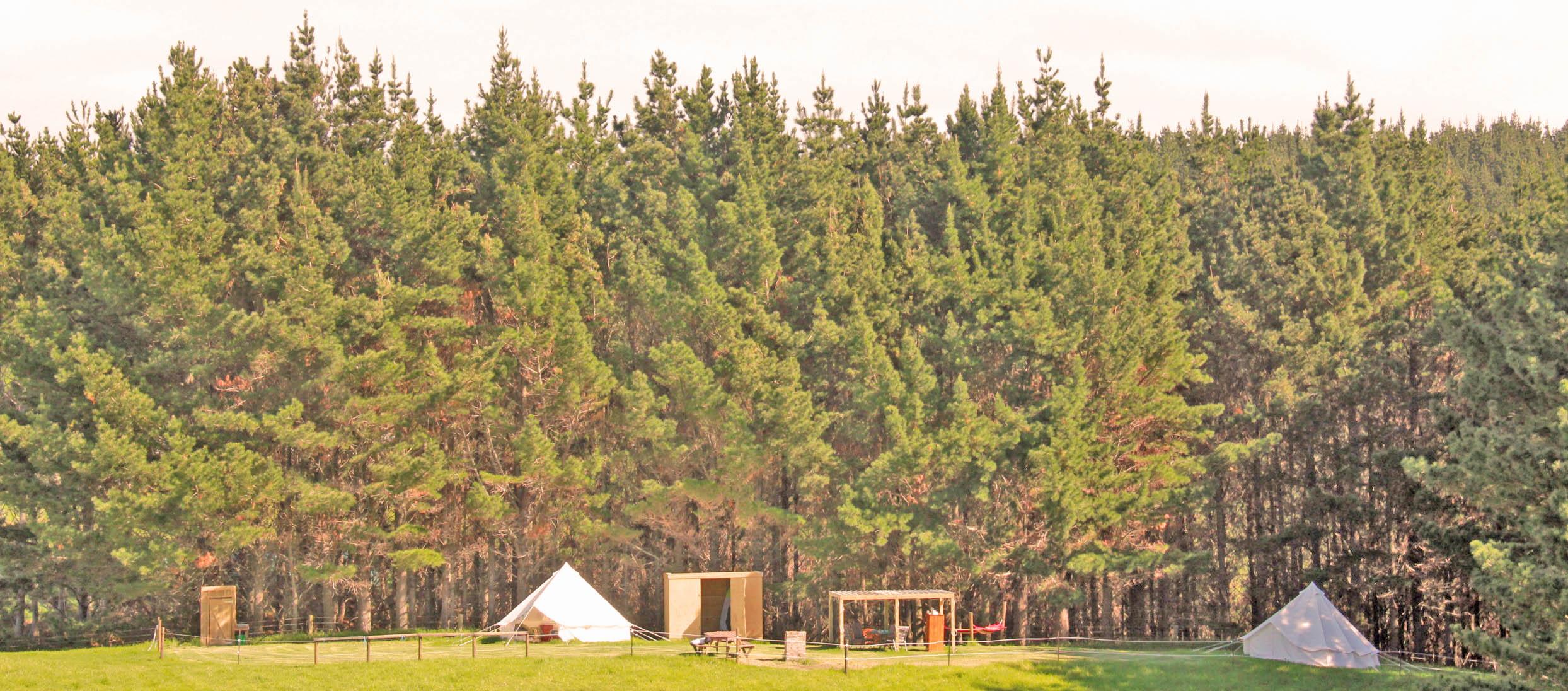 Forestry getaway!