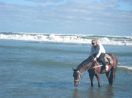 Horseplay in the sea!