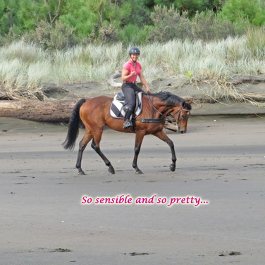 Gerry schooling at the beach.jp