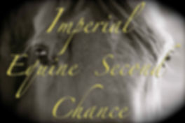 imperial equine second chance logo.jpg
