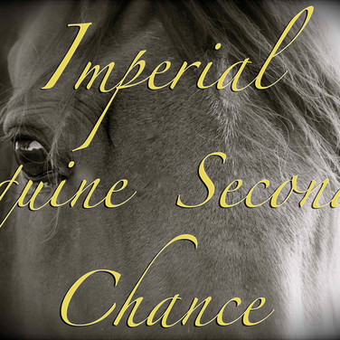 home to imperial equine second chance
