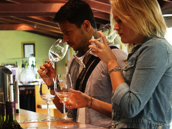 Tips for a successful wine tasting tour
