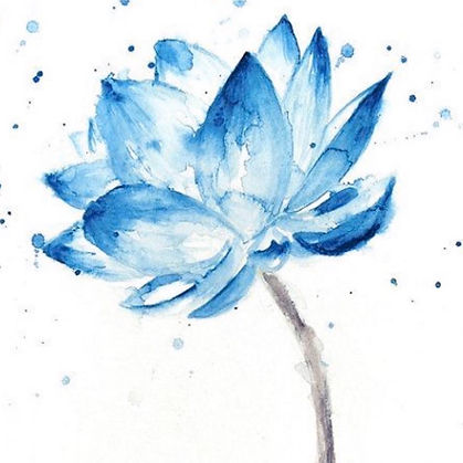 blue lotus 1.jpg