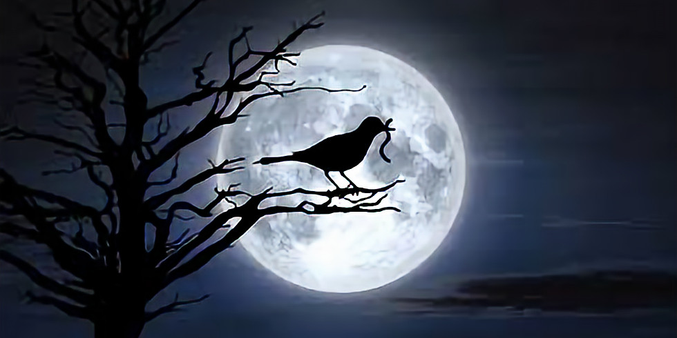 """Full """"Worm"""" Moon Ceremony and Virtual Song & Drum Circle"""