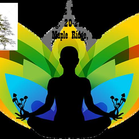 RainForest Magic Transformation Retreat