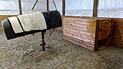 KsCER Stallion Collection Area