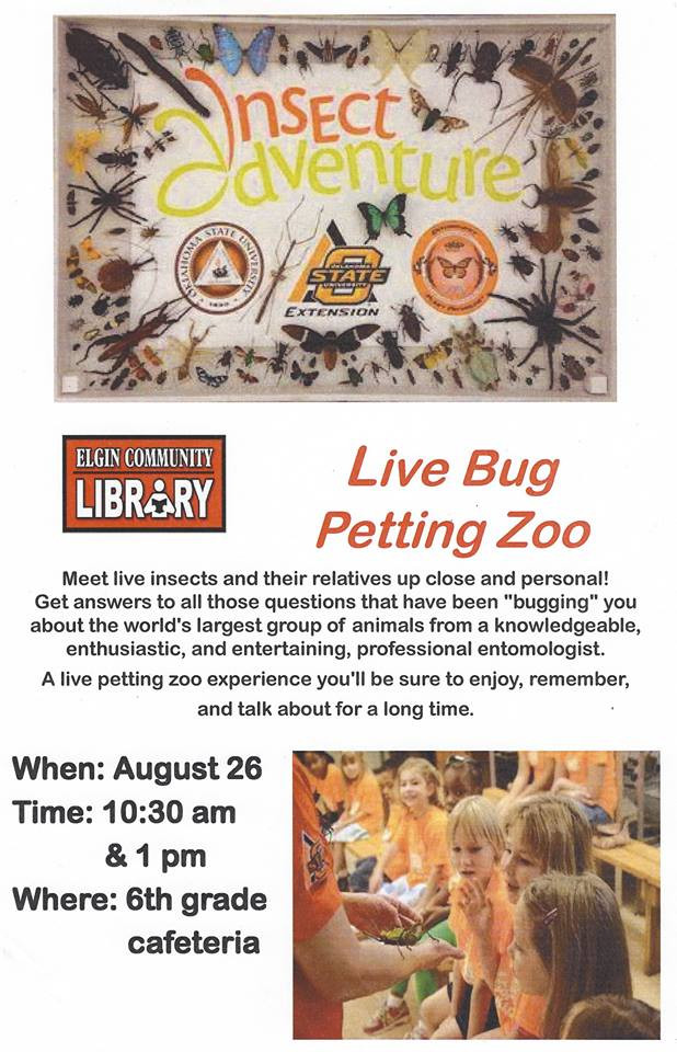 Come join in the fun of a live bug petting zoo.