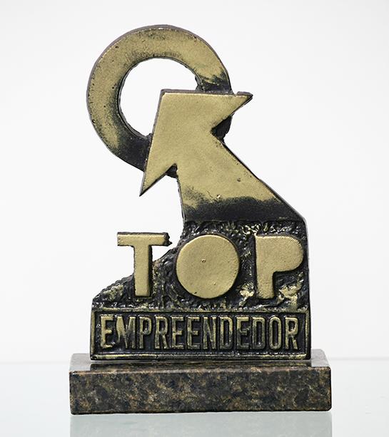 top-empreendendor