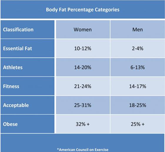 Body Fat Percentages.PNG