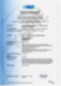 KOPIE_Seite 1_WPK-Zertifikat_EN 1090-1 F