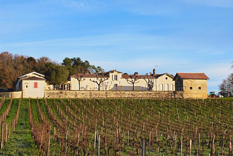 Château beaulieu et son vignoble