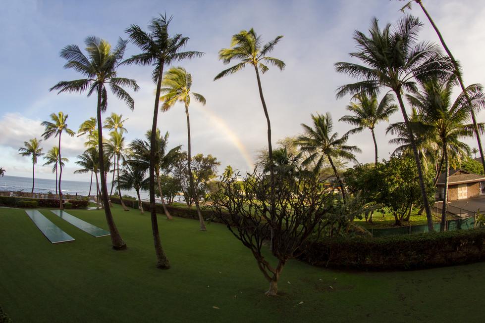 maui_beach_2.jpg
