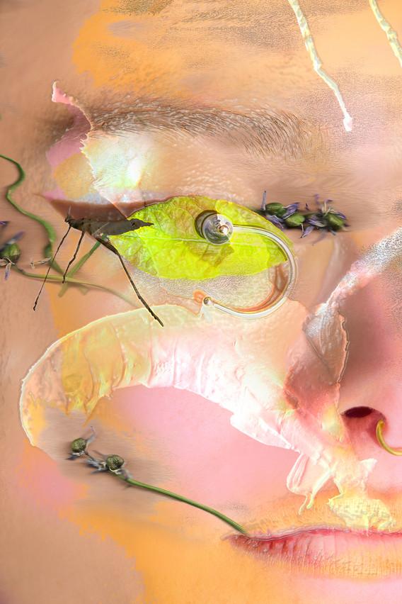 shotbyus__metamorphosis_web__002.jpg