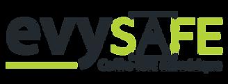 inelys-social-solution-rh-evysafe-coffre-fort-numerique
