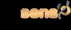 Logo-essens-consulting-noir.png