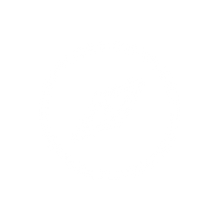 Icônes_métiers_INELYS_-_2020_icone-met