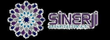 Лого_СИНЕРДЖИ_edited.png