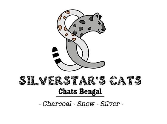 logo silverstar's cats avec texte italic