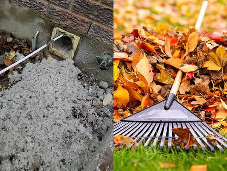 Ne laissez pas la poussière s'accumuler comme un tas de feuilles mortes