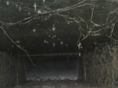 L'intérieur d'un conduit d'air après 3 ans semble venir tout droit d'un film d'horreur!