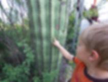 aug touching saguaro_edited.jpg