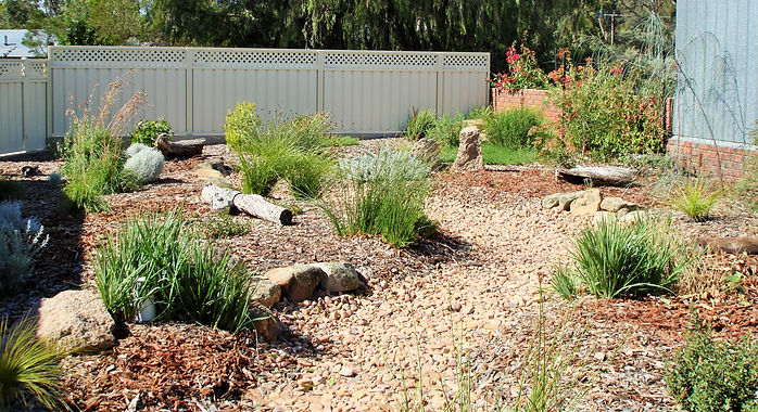 Native landscaping provides habitat and food resources for local wildlife