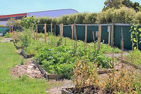 Sustainable Living Program for the Circular Head Christian School