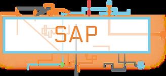 SAP-01.png