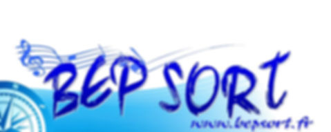 Logo BEP SORT Site NG.jpg