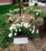 Olmstead plaque.jpg