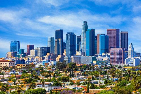 US IMMIGRATION TRAINING - LOS ANGELES CA