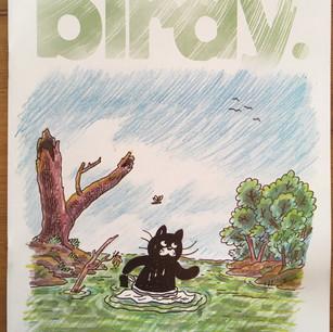Birdy Magazine