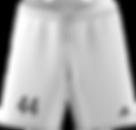 2019_20 shorts.png