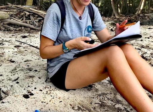 Microplásticos nas praias de desova | Microplastics at nesting beaches
