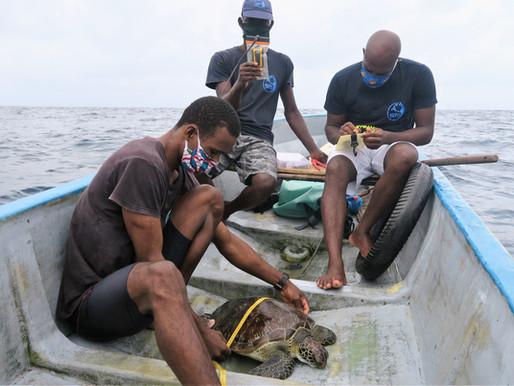 Impacto do COVID-19 em São Tomé | Impact of COVID-19 in São Tomé