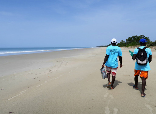 Programa Tatô na Guiné-Bissau