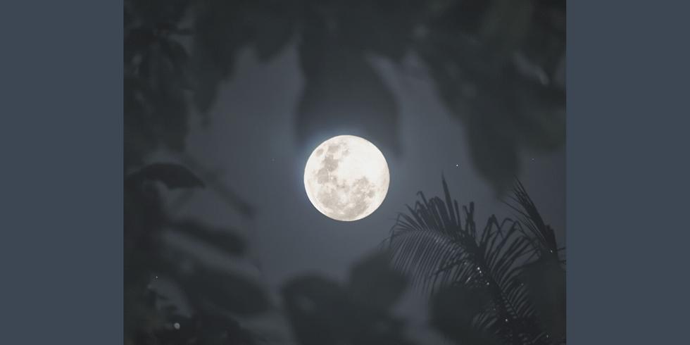 Excursion Pleine Lune