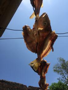 Pescado secando en casa de Juanita Mejía