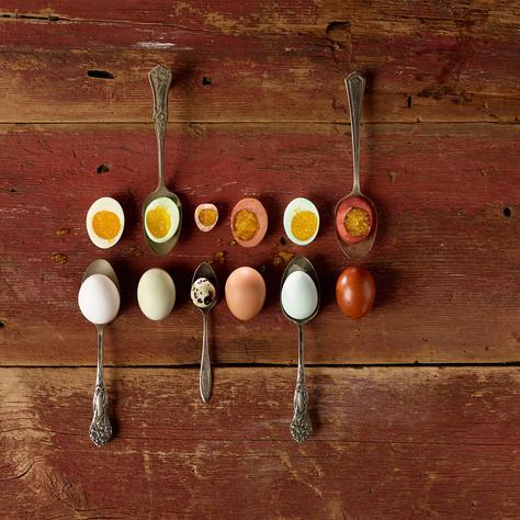Eggs _3.jpg