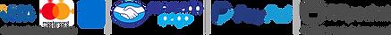 metodospago-icon.png