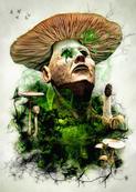 Toxic Mushroom.jpg