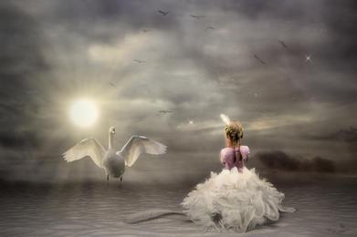 White wings.jpg